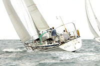 2012 Cape Charles Cup A 896