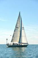 2015 Cape Charles Cup C 633