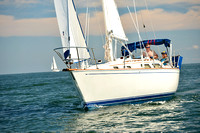 2015 Cape Charles Cup C 308