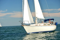 2015 Cape Charles Cup C 309