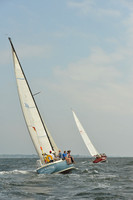 2015 Vineyard Race A 286