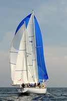 2013 Vineyard Race A 1004