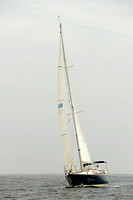 2013 Vineyard Race B 236