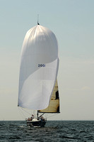 2013 Vineyard Race A 1842