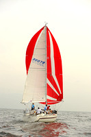 2013 Vineyard Race A 295