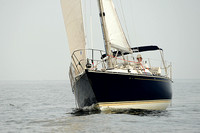 2013 Vineyard Race B 238