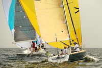 2013 Vineyard Race A 261