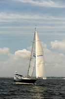 2013 Vineyard Race A 564
