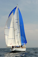 2013 Vineyard Race A 1005