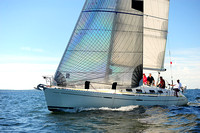 2014 Vineyard Race A 226