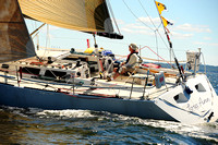2014 Vineyard Race A 803