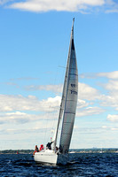 2014 Vineyard Race A 215