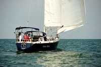 2014 Cape Charles Cup A 569