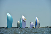 2014 Charleston Race Week F 347