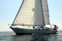 2011 Vineyard Race A 1727