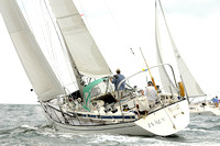 2012 Cape Charles Cup A 895