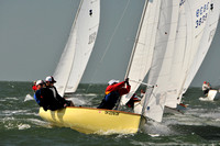 2012 Thistle Midwinters B 560