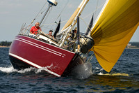 2016 Chester Race Week A 204