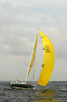 2013 Vineyard Race A 244