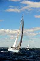 2014 Vineyard Race A 298