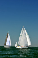 2013 Southern Bay Race Week C 1104