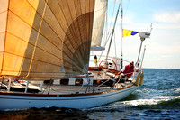 2014 Vineyard Race A 1138