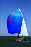 2014 Southern Bay Race Week DB2 227