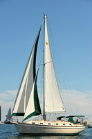 2015 Cape Charles Cup C 250